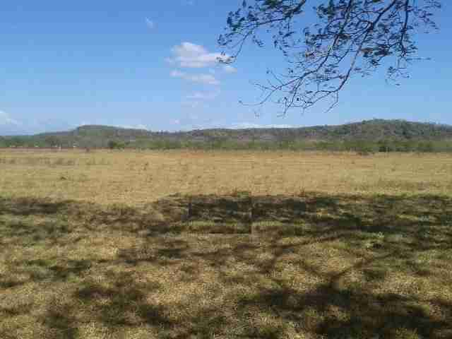 Agricultural Land Guardia Commercial Land for sale in Guanacaste Costa Rica Sun Real Estate