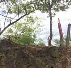 Cheap Development Land El Salto Bagaces Guanacaste Costa Rica Sun Real Estate