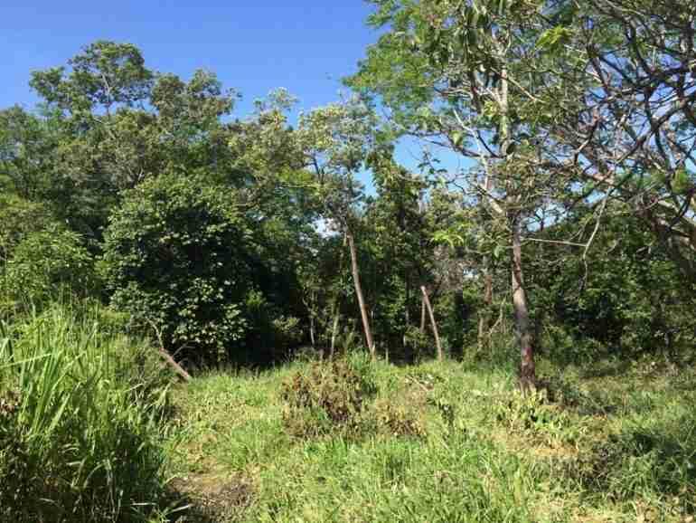 Cheap Mountain Land near Liberia for sale in Guanacaste Costa RicaSun Real Estate