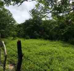 Commercial Land Liberia Airport Guanacaste Costa Rica Sun Real Estate