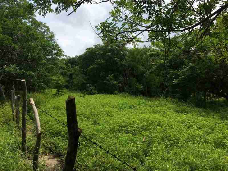 Commercial Land Liberia Airport Guanacaste Costa Rica Sun Real Estate