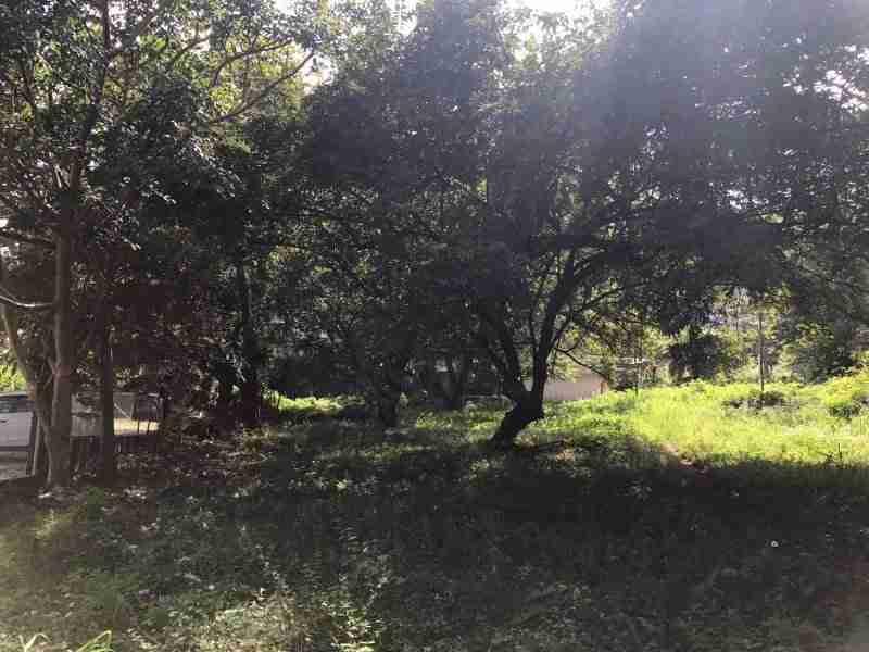 Commercial Property Playa Hermosa for sale in Guanacaste Costa Rica Sun Real Estate