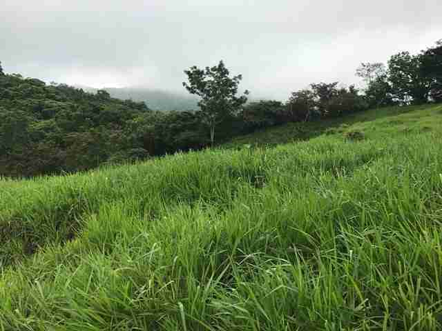 Development Oceanview Land Alemania in Guanacaste Costa Rica for sale Sun Real Estate