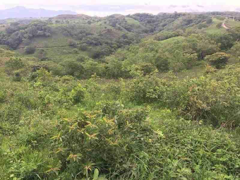 Mountain Land Miravalles Guayabo Guanacaste Costa Rica Sun Real Estate