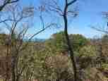 Oceanview Land Cuesta Grande for sale Guanacaste Costa Rica Sun Real Estate