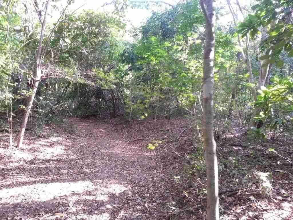 Oceanview development land for sale in Playa Conchal Gold Coast Guanacaste Costa Rica