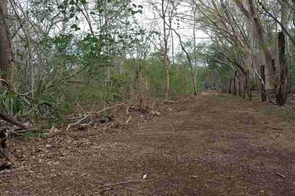 Oceanview development land for sale in Playa Conchal Gold Coast Guanacaste Costa Rica