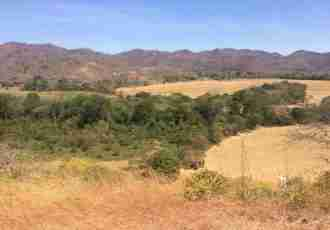 Santa Cruz Farm Land for sale Guanacaste Costa Rica Sun Real Estate