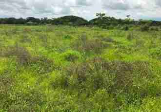 Commercial Development land Liberia for sale in Guanacaste Costa Rica LL1800011- Airport property