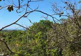 Development Land Peninsula Nicoya for sale in Alemania Guanacaste Costa Rica Sun Real Estate