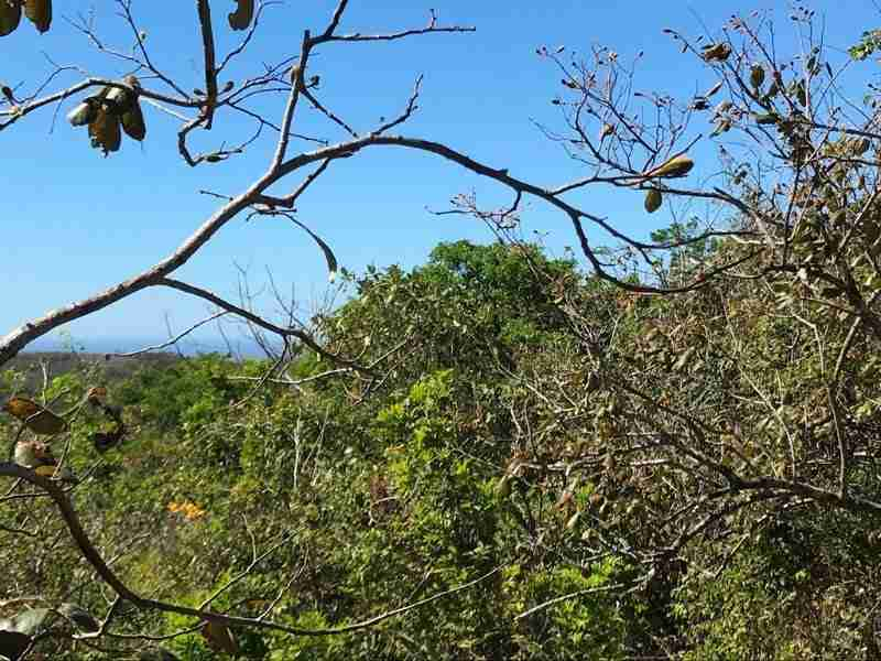 Development Land Peninsula Nicoya for sale in Alemania Guanacaste Costa Rica Sun Real Estate