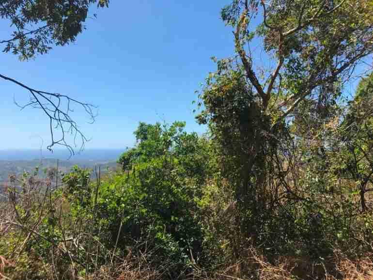 Oceanview Development Farmland for sale in Guanacaste Costa Rica