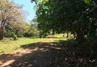 Residential Lot Tamarindo for sale in Guanacaste Costa Rica Sun Real Estate