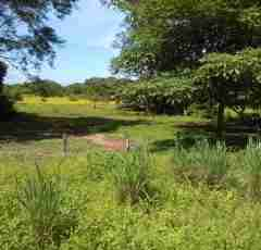 Vacant Land for sale Liberia Airport Commercial Land in Guanacaste Costa Rica Sun Real Estate