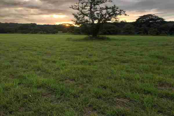 Commercial Land Papagayo Property Sun Costa Rica Real Estate