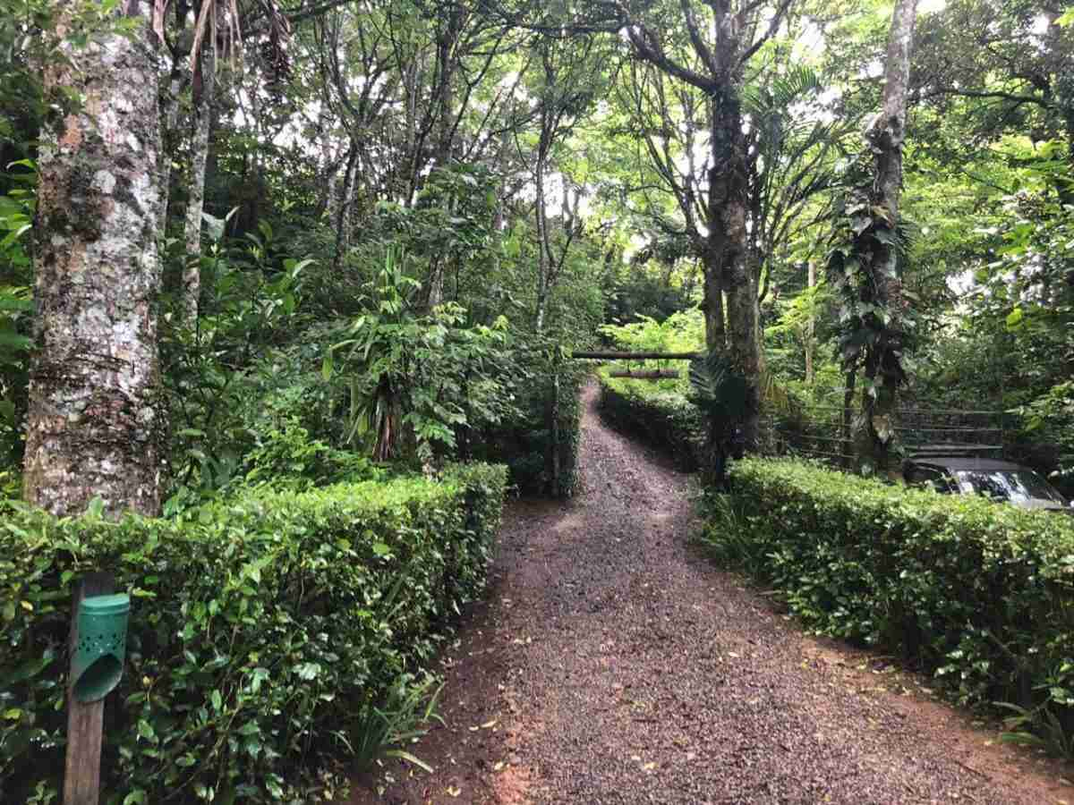 Natural Refuge Bagaces Business Income Property Sun Costa Rica Real Estate