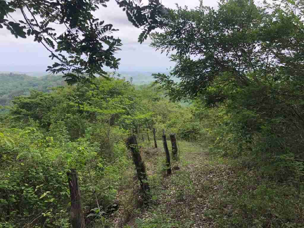Ocean view Farm Sata Cruz Sun Costa Rica Real Estate