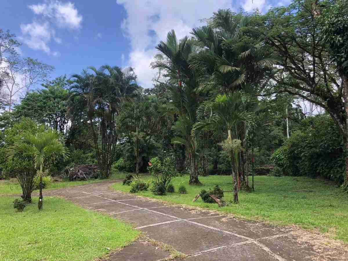 Thermal Water Property Hot Spring Farm for Developer - Upala Costa Rica Sun Real Estate
