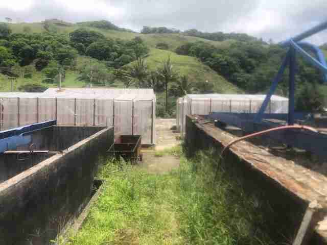 Coffee Farm with Processing Factory in Monteverde Sun Costa Rica Real Estate