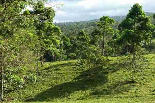 Commercial Property Bijagua Sun Costa Rica Real Estate