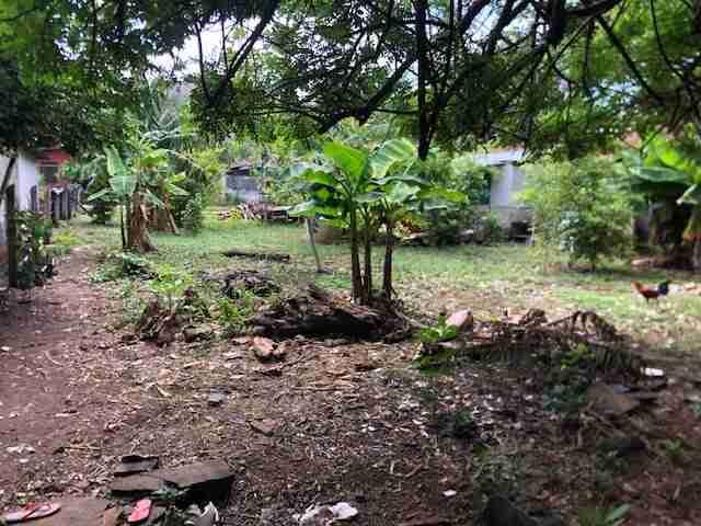 Commercial Property in Coco Sun Costa Rica Real Estate